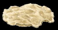 Le tour du monde en 80 pains | carasau ou carta da musica
