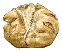 Le tour du monde en 80 pains | damper