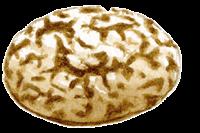 Le tour du monde en 80 pains | pain de seigle valaisan